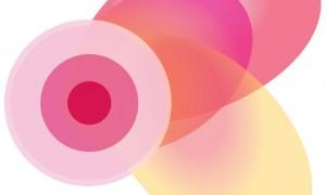 Nacionalni program ranog otkrivanja raka dojke