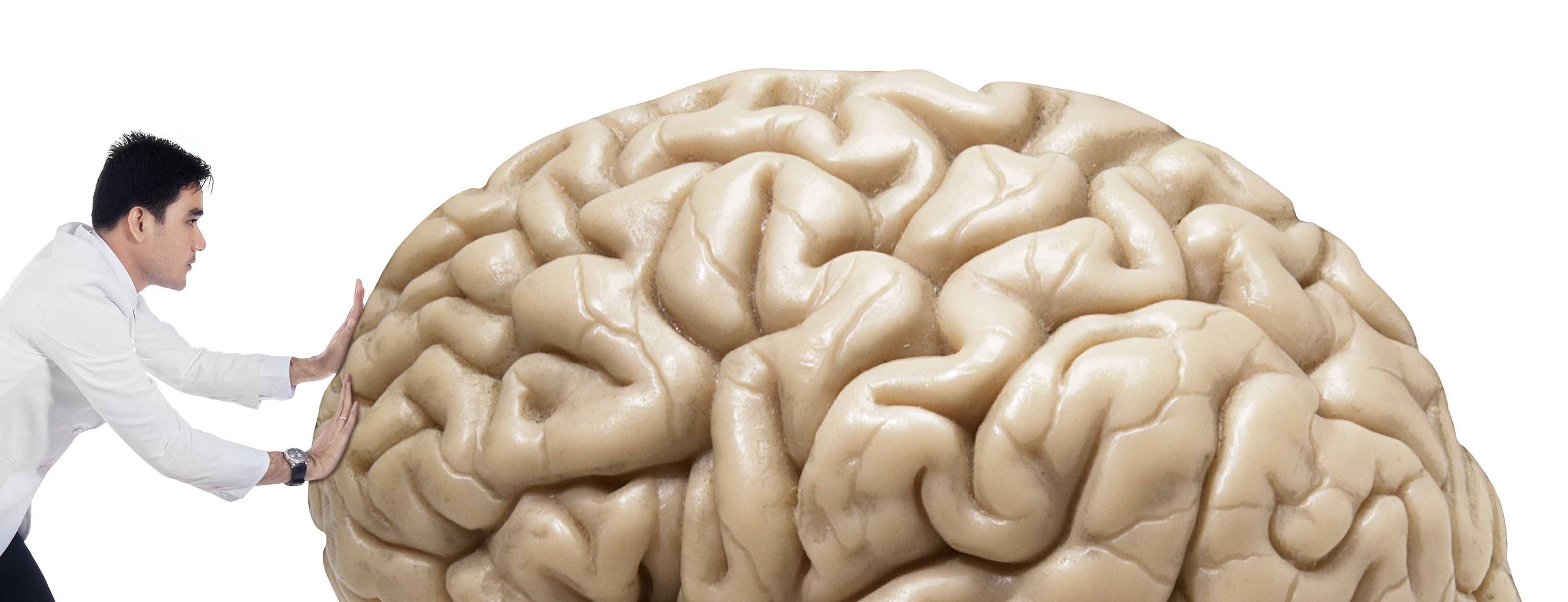 17. Tjedan mozga 12. - 18. 3. 2018.