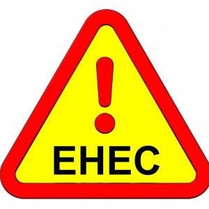 Što je EHEC i kako se zaštititi?