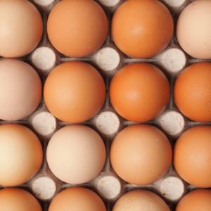 Konzumiranje jaja i zdravlje