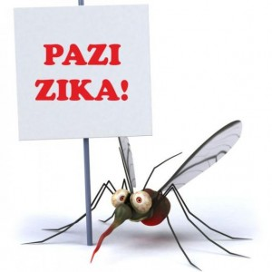 Zika virusna infekcija