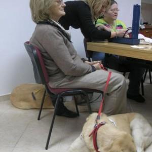 Dan žena u Udruzi slijepih i slabovidnih DNŽ