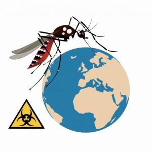 Zanimljivosti o komarcima